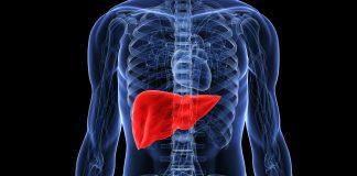 principalele semne ale ficatului