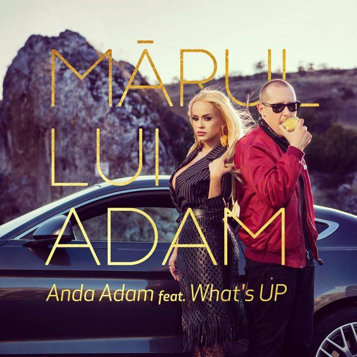 anda adam & what's up